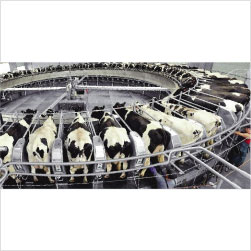 Milking-Parlor